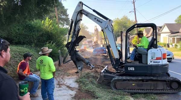 Tree removal Brookfield